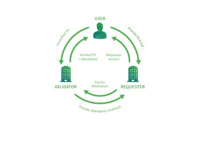 Staking CVCs: Token Behavior Model
